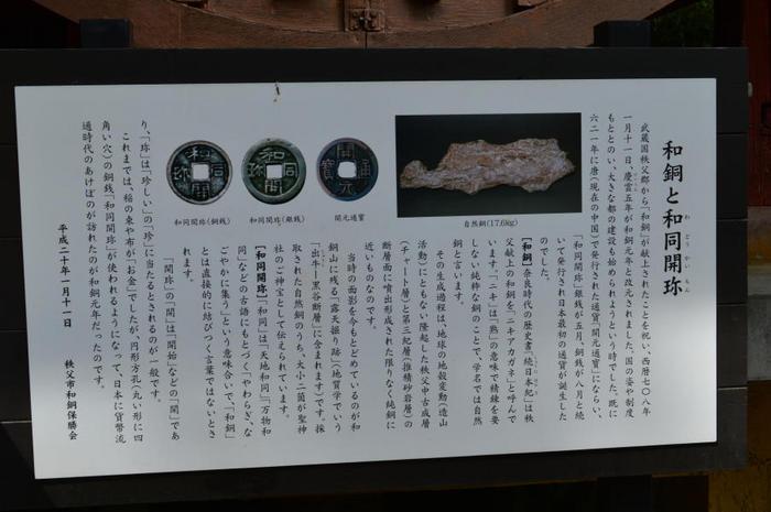 CD-17.jpg